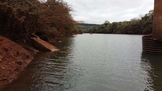 Medioambiente misionero: proponen ley para la preservación de cuencas e impulsar la recuperación de bosques con especiesnativas
