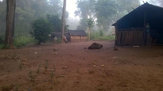 Fallecieron dos niños mbyá al recibir una descarga eléctrica mientrasjugaban