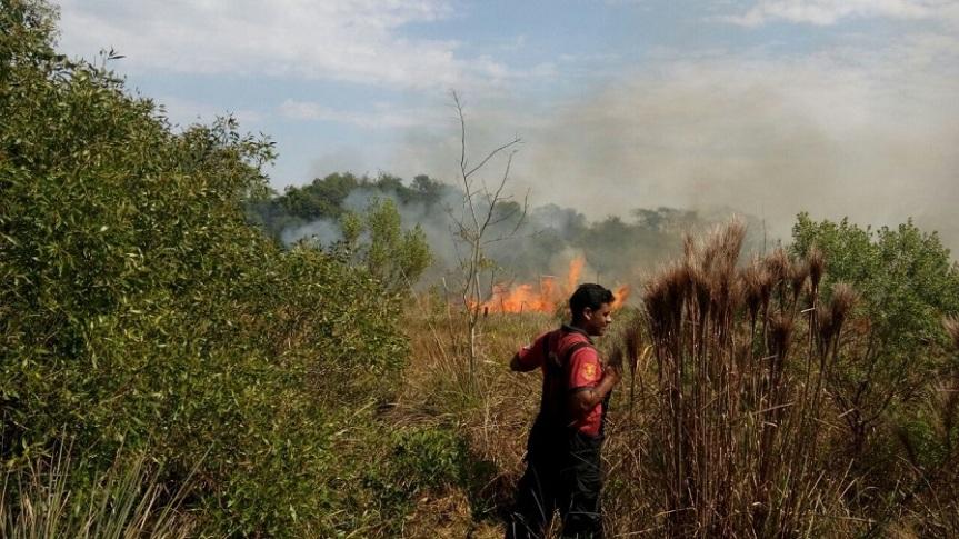 Pastori pidió a Nación destinar más recursos y horas de vuelos para combatir los incendios en todo elpaís