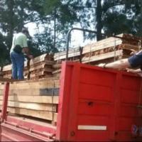 Camión rumbo a La Pampa fue detenido con Cannabis escondida entre la madera