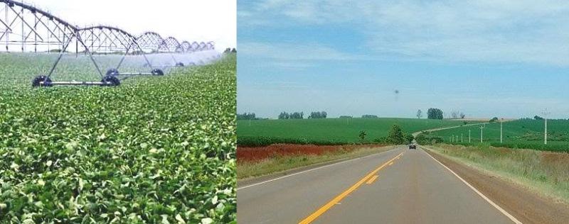 Organizados en cooperativas, Rio Grande do Sul bate record exportando soja y plantan hasta en lascolectoras
