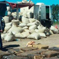 Camión cargado con yerba llevaba camuflada 10 toneladas de marihuana