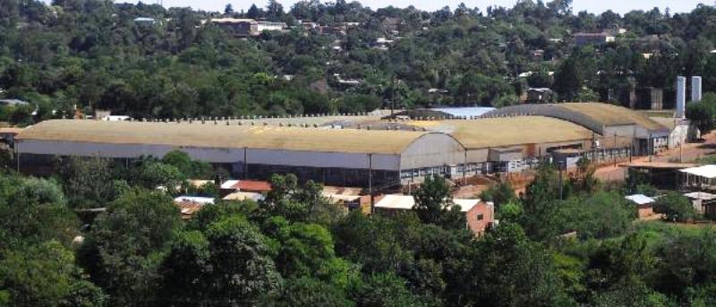 Despidieron a 150 trabajadores en la fábrica dezapatillas