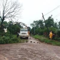La tormenta dejó árboles y postes de energía caídos en varios barrios