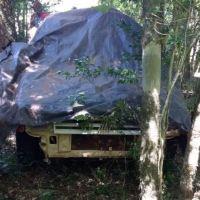 Encuentran auto tapado en el monte que habría atropellado al peatón en la ruta costera