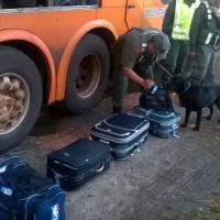 Llevaba 17 kilos de marihuana en una valija a bordo de un colectivo que iba de Misiones a Buenos Aires