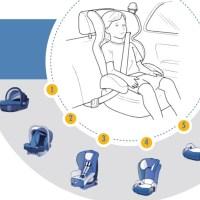 Por decreto, todos los menores de 10 años deben viajar en auto con sillas de seguridad