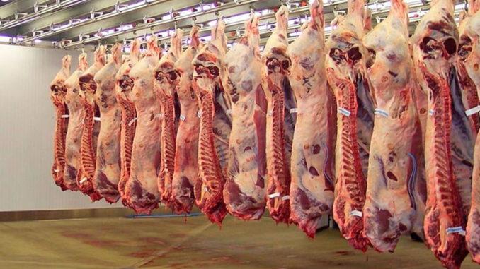Luego de 17 años, Argentina realizó el primer embarque de carne vacuna a EstadosUnidos