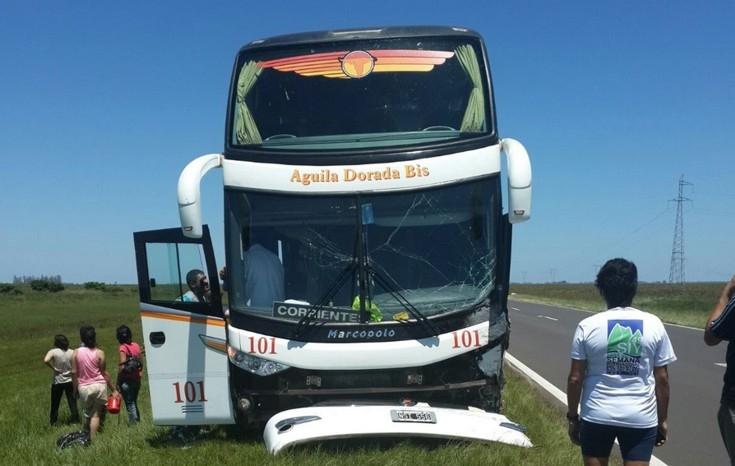 Colectivo embistió una vaca en la ruta 12 dejando 14 pasajerosheridos