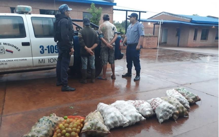 Detenido por robar bolsas de cítricos en uncomercio