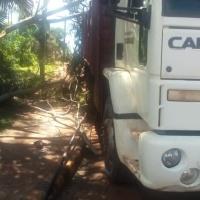 Falleció trabajador que cayó de la carrocería de un camión donde realizaba podas