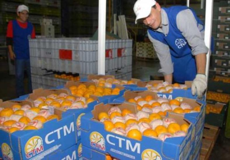 La Cooperativa Citrícola proyecta diversificar con maracuyá yananá