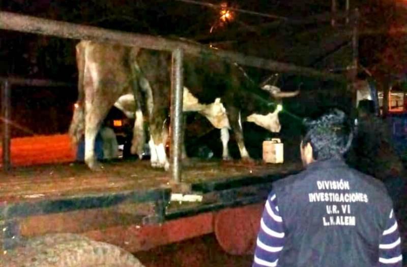 Detienen camión con personas y animales en lacarrocería