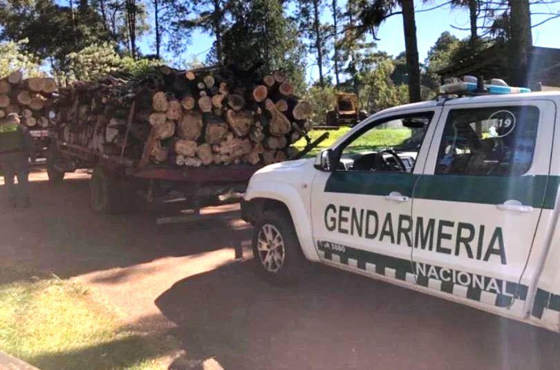 Secuestran dos camiones llevando madera ilegal en la ruta14