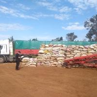 Contrabando de soja a Brasil: 13 allanamientos, 3 camiones y 175 toneladas secuestradas