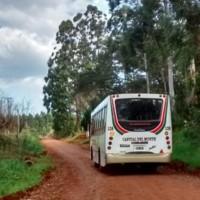 """Autorizaron colectivos desde Campo Ramón a Oberá y vecinos de Guaraní piden que se habiliten para todos los municipios: """"no tuvimos ningún caso del virus"""""""