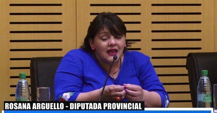 """En lo que va del año, la diputada Argüello presentó 41 declaraciones de interés y dos de Ley, uno para crear el """"Día Provincial de la Conservación del Suelo Misionero"""""""