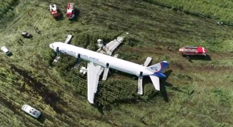 Avión con 233 personas aterrizó en un campo tras chocar conpájaros
