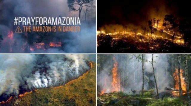 400 bomberos voluntarios argentinos se ofrecieron para combatir incendios en elAmazonas