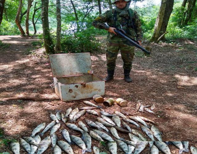 Ecología intensifica controles por laVeda