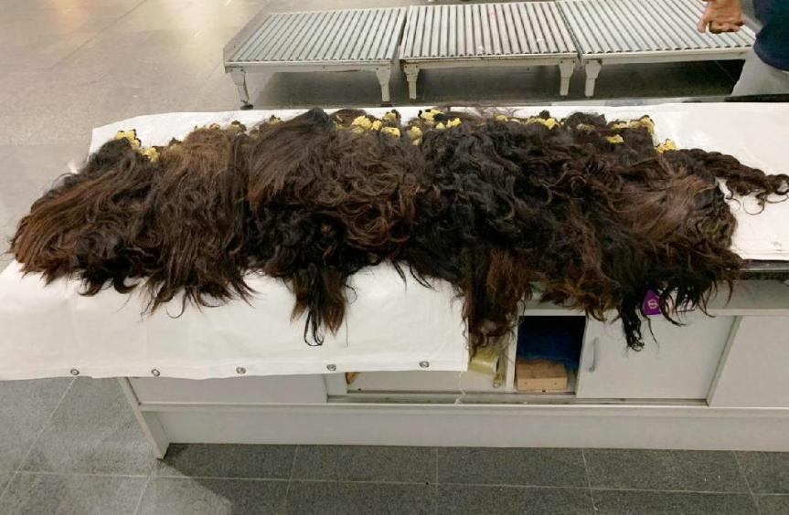 Incautaron 13 kilos de cabellocontrabandeados