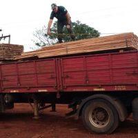 Clausuraron aserradero y secuestraron camión con madera nativa