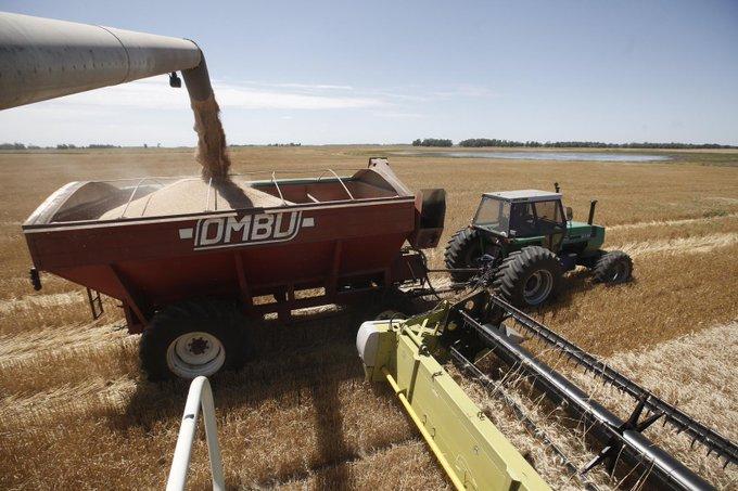 Por la suba de retenciones, argentinos compran y alquilan campos enUruguay