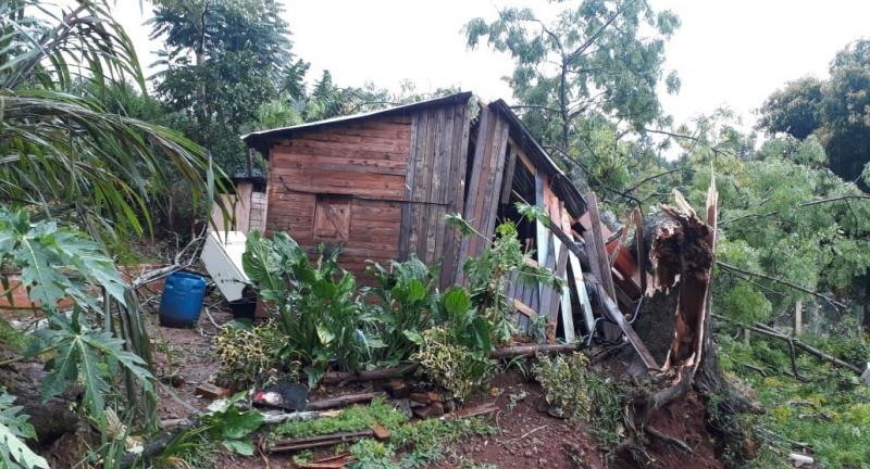 Árbol cayó sobre una vivienda durante la tormenta enPanambí