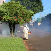 Concejales declararon Alerta Sanitaria por dengue en Oberá
