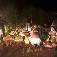 Con visores nocturnos, detectaron narcos en el río y hallaron 1875 kilos de marihuana abandonados
