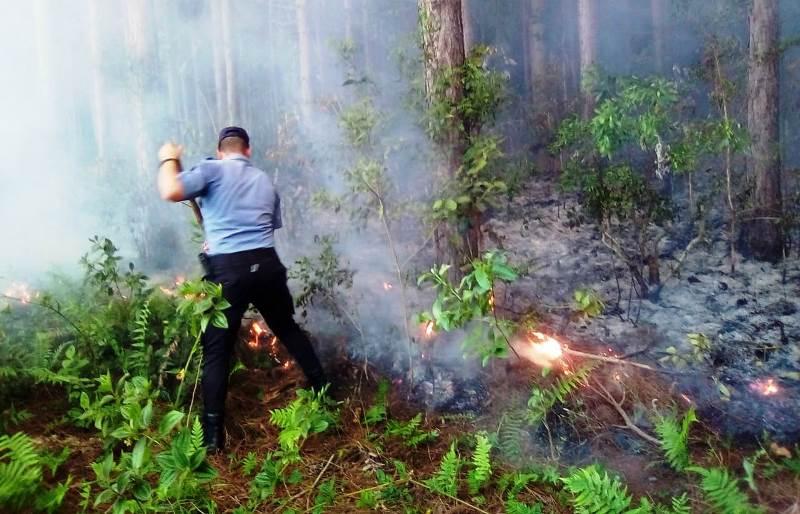 Sequía: Se registraron varios incendios en la ZonaCentro