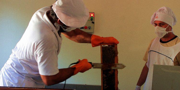 PISEAR: Con una inversión de $2.387.350, pusieron en funcionamiento la Sala de Extracción de Miel en 25 deMayo