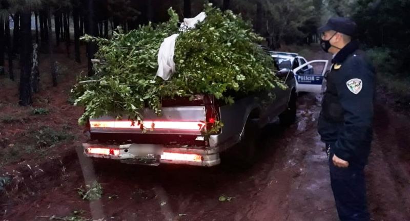 Hallaron camioneta abandonada con 600 kilogramos de yerbarobada