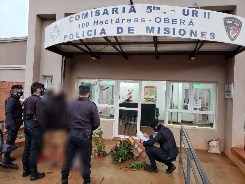Hallaron 189 plantines de yerba robados en una vivienda de CienHectáreas