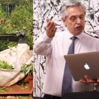 Yerba: Nación pide que se le pague menos al productor o aplicarán la Ley de Abastecimiento para frenar exportaciones