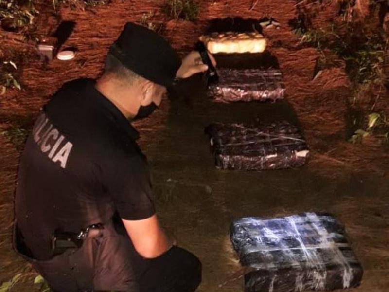 Hallaron 95 panes de marihuana en un pinar valuados en$6.365.819
