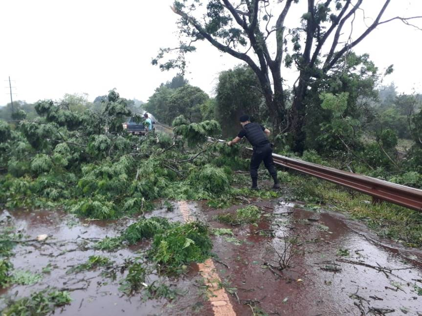 Cayó un árbol sobre la ruta 14 en Campo Viera y se registran cortes de energía en Guaraní, Campo Ramón yOberá