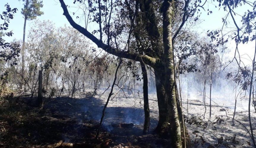 """Vecina del Club Alemán denunció incendio intencional de su propiedad: """"es inaceptable que hayan atacado a losbomberos"""""""
