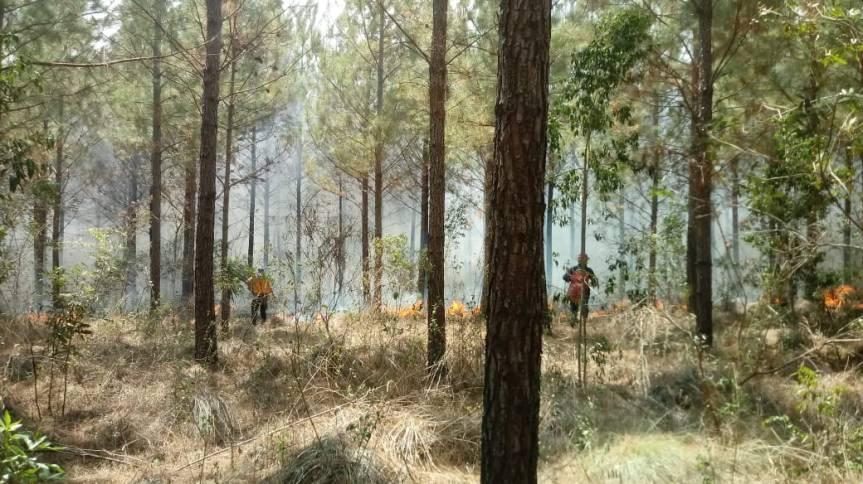 Se incendió un monte nativo en Alvear y las autobombas no puedenentrar