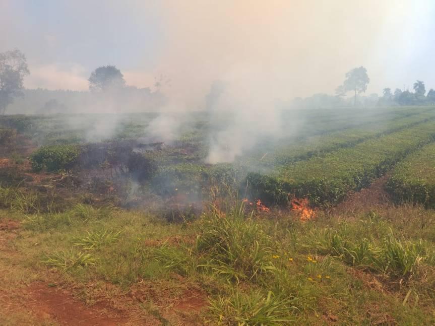 Productores piden que se declare la Emergencia Agropecuaria en laprovincia