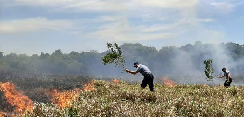 50 focos de incendio se registraron elmartes