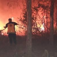 Policías, bomberos y vecinos lucharon contra los vientos y pastizales secos que propagaron las llamas la madrugada