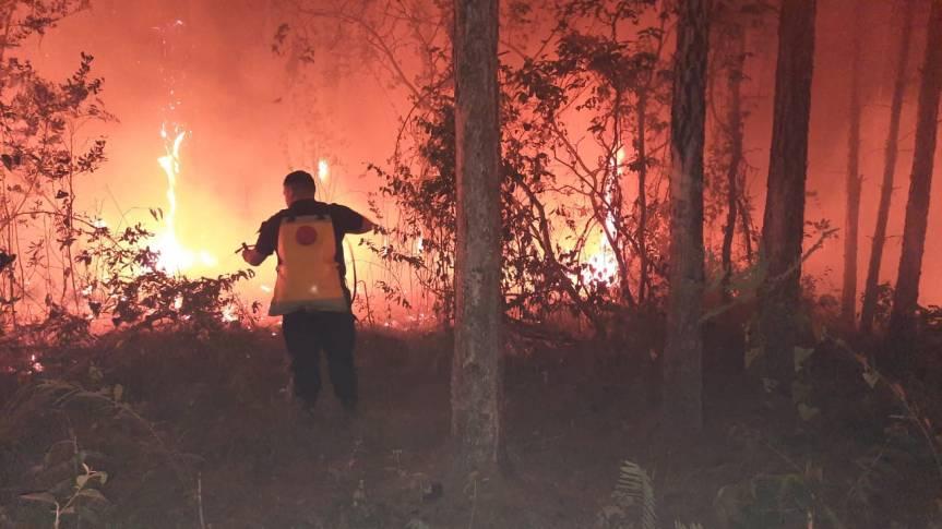 El fuego destruyó una chacra en SanMartín