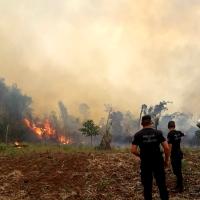El fuego consumió casi 400 hectáreas en Caá Yarí, 65 en Cerro Azul y 170 en Bonpland