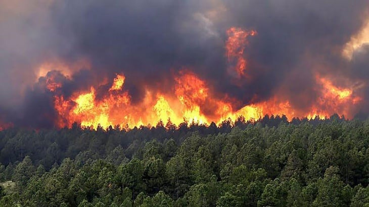 El incendio en la Biósfera Yabotí habría sido causado porocupantes