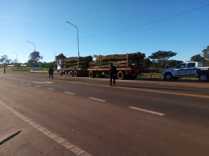 Incautaron un camión por falta de documentaciones que transportaba maderanativa