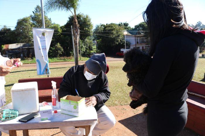 Jornada de vacunación antirrábica: hoy en VillaMousquere