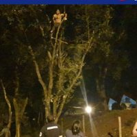 Se subió a un árbol y amenazó con suicidarse