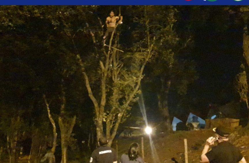 Se subió a un árbol y amenazó consuicidarse