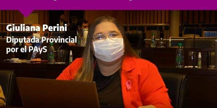 """Perini: """"Gracias a esta ley tendremos datos reales sobre el dengue enMisiones"""""""